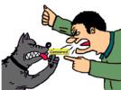 Thumbnail Dog Barking? Problem Solved!